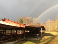 photo of double rainbow over pavilion at Polonia Park